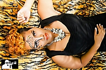 Tiger bookings - Photoshoot